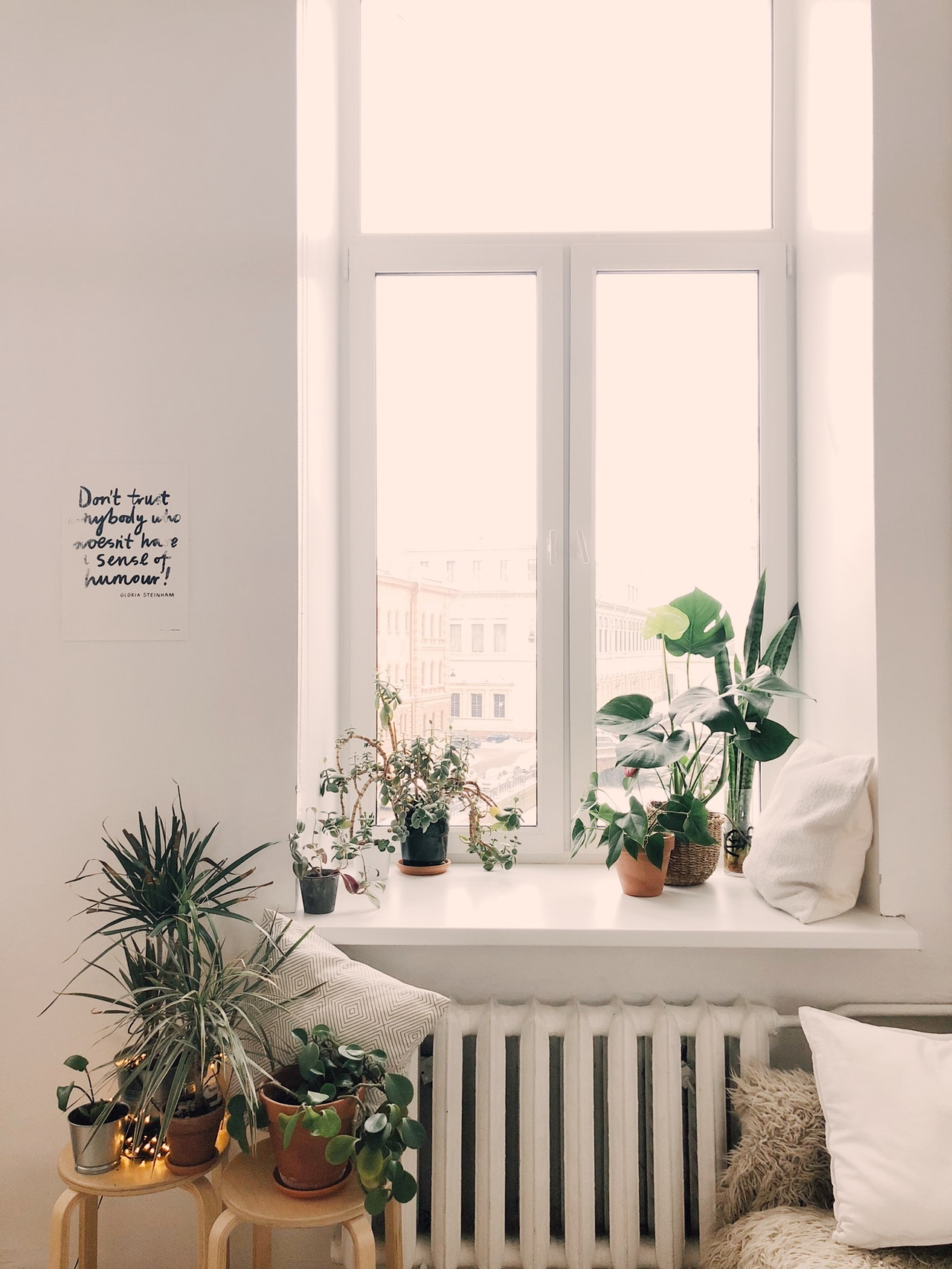 planten in een scandinavisch interieur