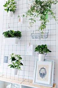Plant Bedroom Aesthetic Diy