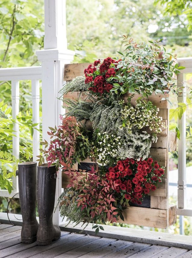 bloemen in pallets