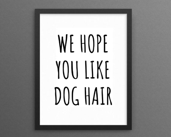 Afbeelding hondenpost We hope you like dog hair