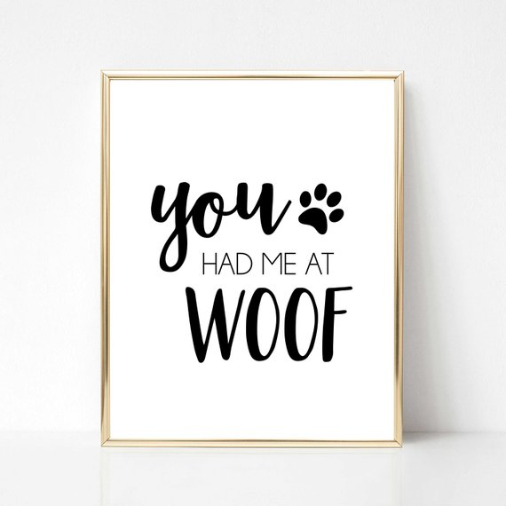 Afbeelding hondenposter You had me at woof