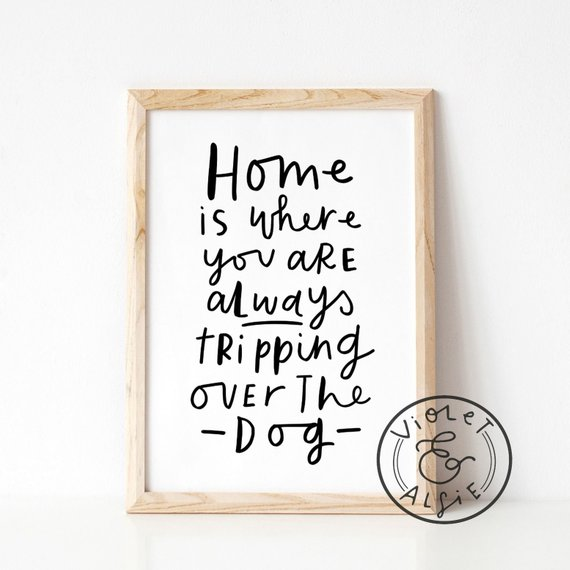 Afbeelding hondenposter Home is where you are always tripping over the dog