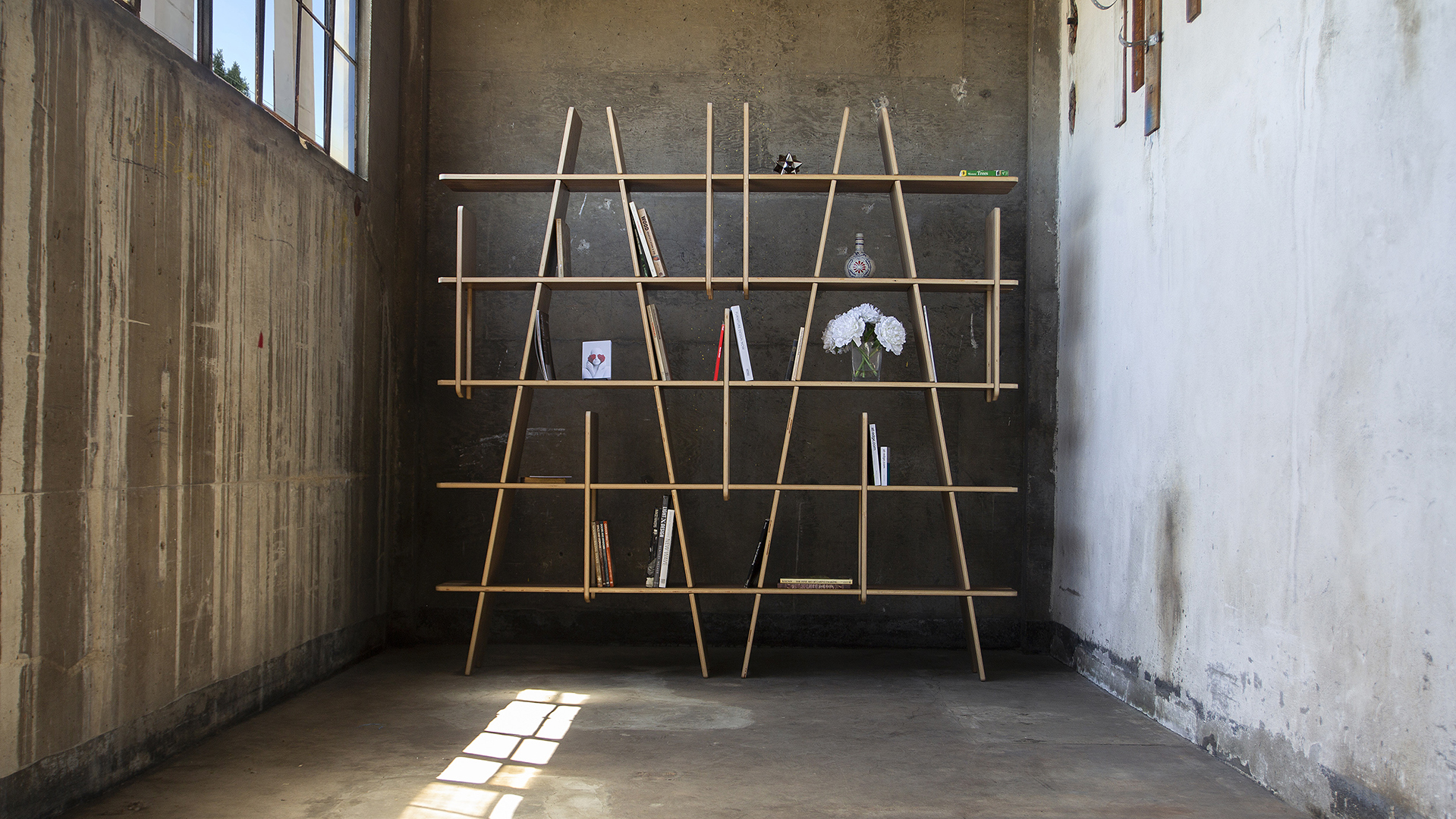 The LINES shelving unit